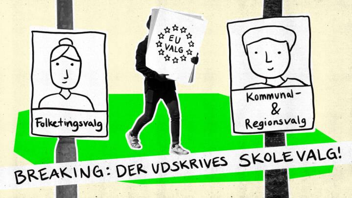 Typer af valg i Danmark