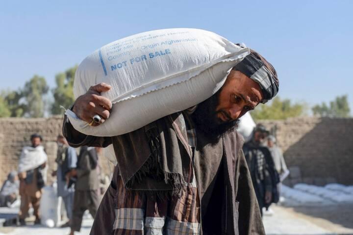 Afghanistans økonomi er i frit fald efter Taliban: 'Vi har brug for mad og penge'