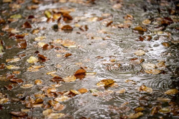 Regnen fortsætter - og der bliver skruet godt op for blæsevejret