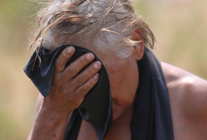 Ekstrem varme og smitsomme sygdomme: Klimaforandringer har kæmpe konsekvenser for vores helbred