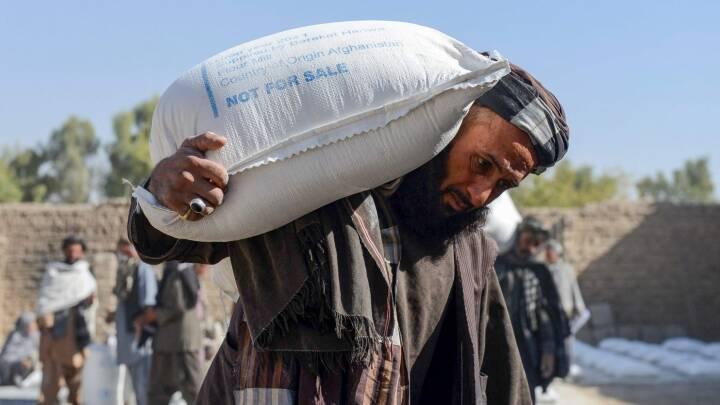 Taliban indtog Afghanistan – hvordan er landet nu?