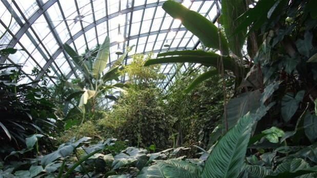 Botanisk Have åbner Op For Nyt Publikum østjylland Dr