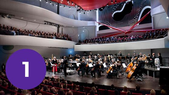 Musikhistoriske Oplevelser Hjemme I Stuen 5 Farverige Koncerter Til