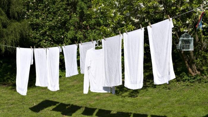 Derfor dufter vasketøjet så godt, når det...