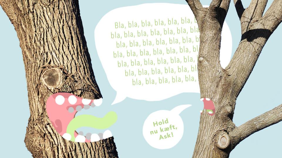 Videnskaben slår fast: Træer kommunikerer med hinanden